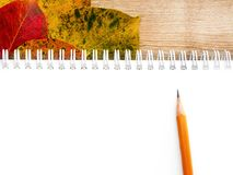 School notebooks, pencil and autumn leaves. Back to school concept. Creative flat lay. School white notebooks on the springs, pencil and autumn color leaves on stock images