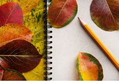 School notepad with pencil and with autumn leaves. Creative flat lay. School notepad with pencil and with autumn leaves. Concept back to school and end of royalty free stock photography