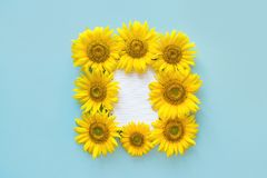 School open white notebook and sunflower on blue background, spiral notepad on a table. Still life, business, office, education c. Oncept, mock up royalty free stock images