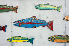 School Of Painted Salmon Royalty Free Stock Photography