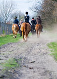 School of riding Royalty Free Stock Images