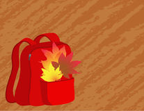 School satchel. With autumn leaves Stock Photo