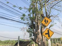 School sigh on the pole. In thailand Stock Photography