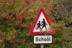 School sign among red berries Royalty Free Stock Image