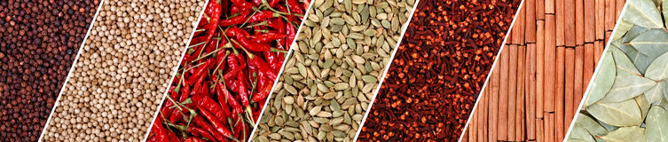 School of spices. Indian spices collection all in one Stock Image
