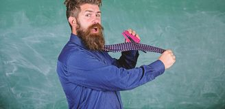 School stationery. Man scruffy use stapler dangerous way. Hipster teacher formal wear necktie holds stapler. Teacher. Bearded man with pink stapler chalkboard royalty free stock image