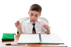 School student examining his work royalty free stock photos