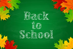 School theme with green chalkboard and maple leaves Stock Photography