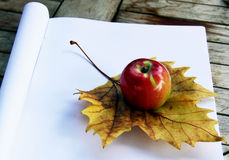 School time. Autumn leaf and an apple on a new, opened notebook Stock Photo