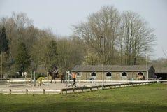 School voor paardrijden stock afbeeldingen
