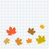 School web banner with maple leaves icons on squared paper Royalty Free Stock Photos