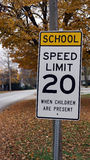 School Zone Sign in Fall Stock Photography