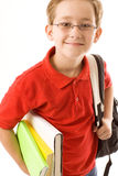 Schoolboy. Smiling schoolboy with books in eyeglasses royalty free stock photos