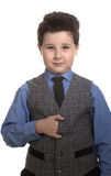 Schoolboy Royalty Free Stock Photo