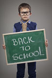 Schoolboy. Back to School Royalty Free Stock Photography