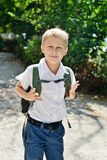 Schoolboy with backpack Royalty Free Stock Image