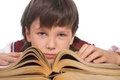 Schoolboy with book Royalty Free Stock Photo