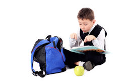 Schoolboy with book Stock Image