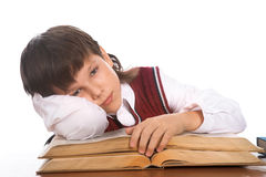 Schoolboy with book Stock Images