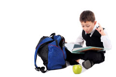 Schoolboy with book Royalty Free Stock Photos