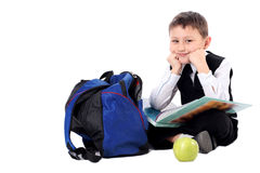 Schoolboy with book Royalty Free Stock Images
