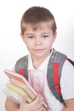 Schoolboy with books and backpack Royalty Free Stock Photography