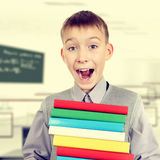 Schoolboy with the Books. Toned Photo of Happy Schoolboy with the Books Stock Images