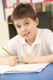 Schoolboy In IT Class Using Computer Stock Images