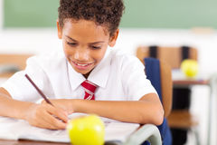 Schoolboy class work Royalty Free Stock Images