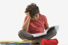 Schoolboy doing homework royalty free stock image
