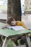 The schoolboy fell asleep on a workbook with his homework. On the desk in the park Stock Image