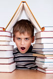 Schoolboy and a heap of books Stock Photography