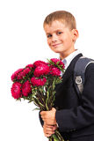 Schoolboy is holding flowers. Back to school Stock Photos
