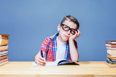 Schoolboy learns homework, education concept Stock Photos