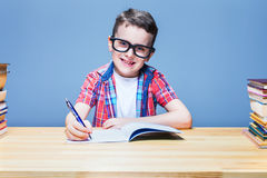 Schoolboy learns homework, education concept Royalty Free Stock Photo