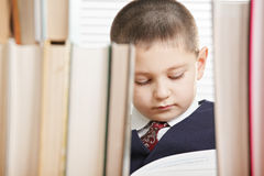 Schoolboy reading behind books Stock Photo