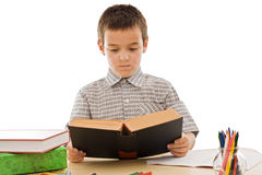 Schoolboy reading a book Royalty Free Stock Image
