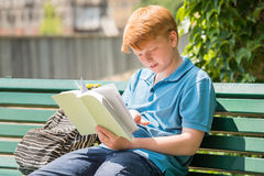 Schoolboy Reading Book Royalty Free Stock Photography