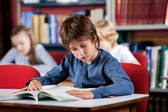 Schoolboy Reading Book At Table In Library Stock Photography