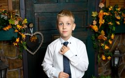 Pretty little boy Stock Images