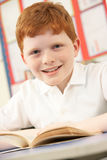 Schoolboy Studying In Classroom Stock Image