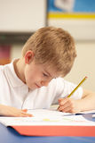 Schoolboy Studying In Classroom Royalty Free Stock Image