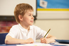 Schoolboy Studying In Classroom Stock Images
