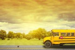 Schoolbus Royalty-vrije Stock Foto