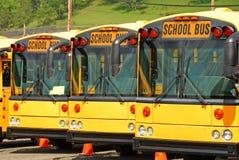Schoolbus Stock Foto