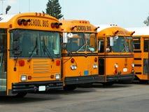Schoolbussen Stock Fotografie