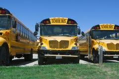 Schoolbussen Stock Foto's