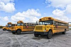 Schoolbussen op Parkeerterrein Stock Foto