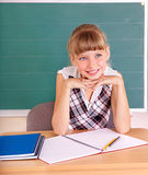 Schoolchild in classroom. Royalty Free Stock Photo