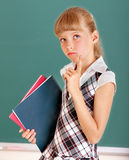 Schoolchild in classroom near blackboard. Royalty Free Stock Image